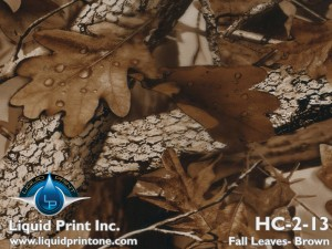 HC-2-13 Fall Leaves Brown