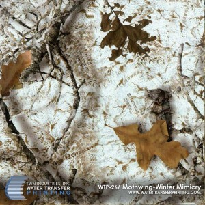 WTP-266-Mothwing-Winter-Mimicry - Copy - Copy